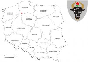 Bilety Komunikacji Miejskiej Chojnice